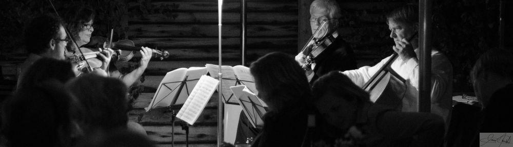 Das Giulin Streichquartett
